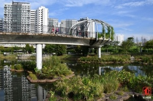 Innovative Floating Wetlands @ Punggol. Image courtesy of www.hdb.gov.sg